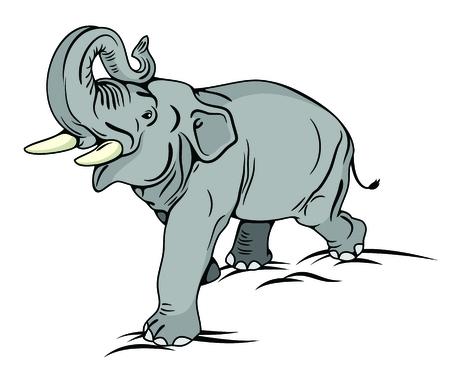 Immagine vettoriale Il maestoso elefante