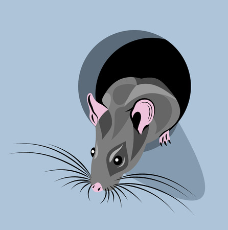 A small mouse looks out of the hole Illustration
