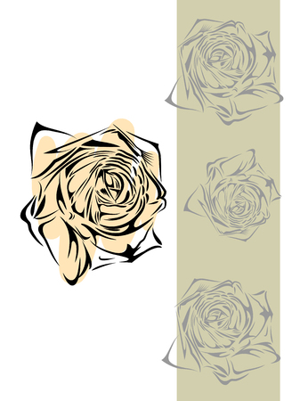 Outline of a blossoming rose, drawing by hand