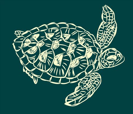 graphic image of a sea turtle, doodle