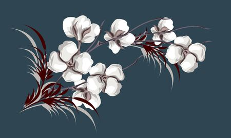 Flowers and cotton branches, vector drawing
