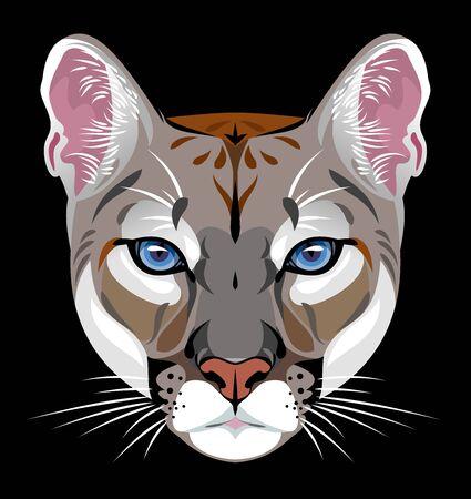 Portrait a cougar