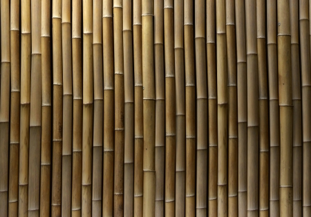 Bamboo Wand Standard-Bild - 19469106