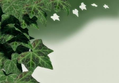 3D rendering of green ivy leaves