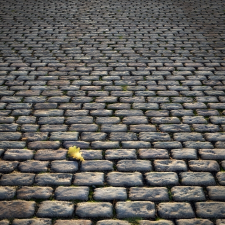Old Road with Cobblestones Standard-Bild