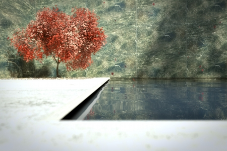 Outdoor pool with red maple photo