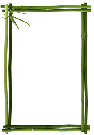 Bamboo frame green portrait photo