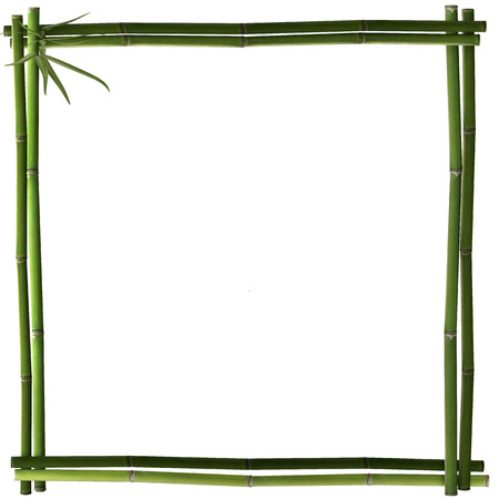 Bamboo frame green square