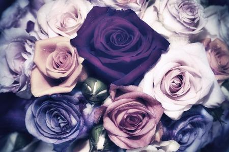 Bunch of roses - vintage look