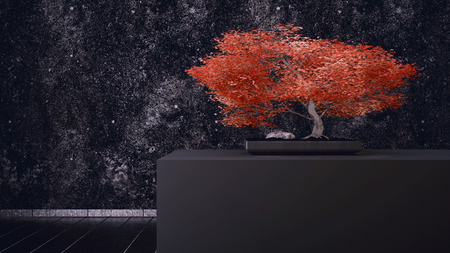 inddor: Red Bonsai in front of a black wall