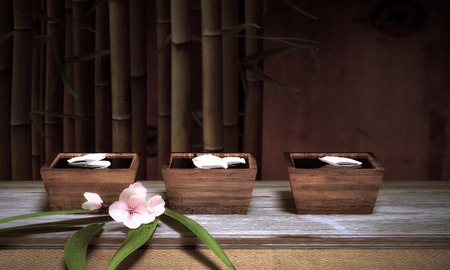 Water Bowls With Bamboo And Cherry Blossoms