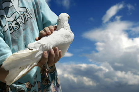 boy holding white dove Stock Photo - 2037801