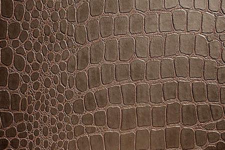 imitation: close up shot of Imitation alligator skin pattern