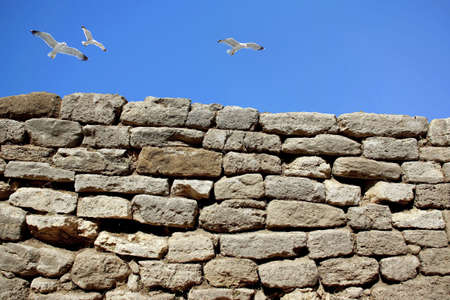 solid rock wall and seagulls over clear sky Stock Photo - 2583799