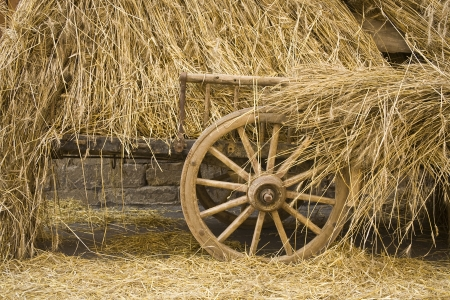 A carriage loaded with golden straw
