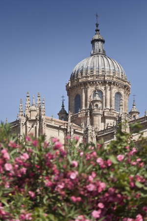 The dome of the cathedral of Salamanca  Spain  Standard-Bild
