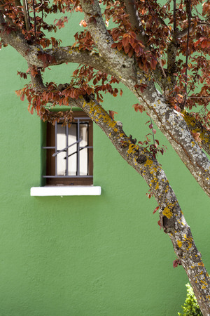 metal bars: A wooden window on a green faade with a tree in front.  The window on the facade has metal bars in front.  In addition the picture was taking in the beginning of spring. Stock Photo