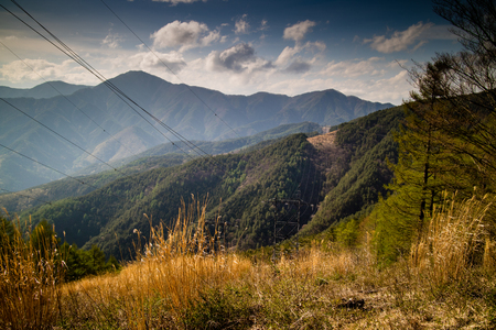Powerlines cutting through forests in the Japanese Mountains Stock Photo
