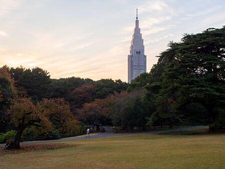 Tokyo, Japan - 21 11 2018: Shinjuku Gyouen during the day Archivio Fotografico - 132422615