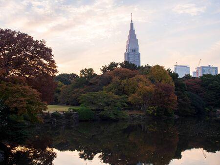 Tokyo, Japan - 21 11 2018: Shinjuku Gyouen during the day Archivio Fotografico - 132422616