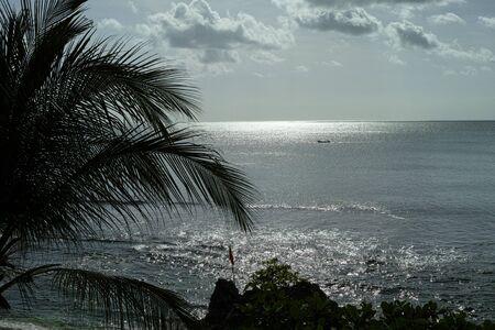 A beautiful sea view with tropical plants. Archivio Fotografico - 133451830