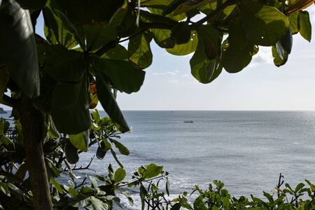 A beautiful sea view with ttropical plants. Archivio Fotografico - 133451882