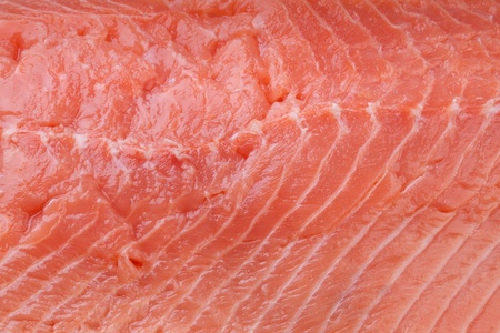 seared: Seared salmon fillet background