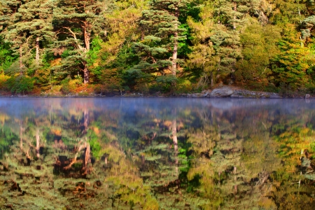 Autumn view of lake and forest reflecting from water Stock Photo - 16145704