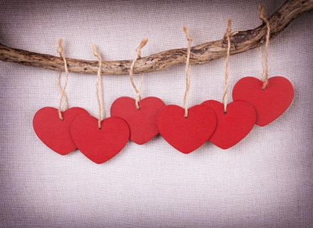 Red wooden heart handing on the branch photo