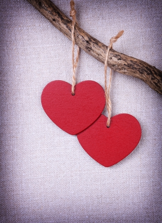 Two red wooden hearts handing on the branch Stock Photo - 17194563