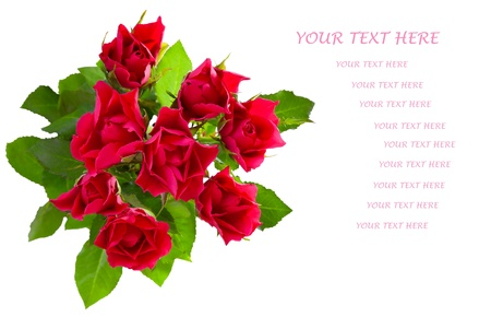 Top view of  red roses bouquet isolated on white background. Copy space for your text. Stock Photo - 18304667