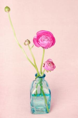Pink ranunculus flowers in a vase on vintage background