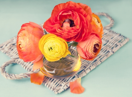 Colorful ranunculus flower in a vase on a wicker tray  photo