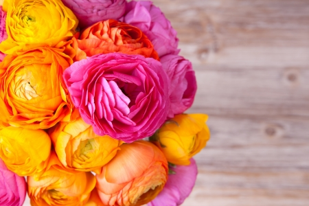Bouquet of beautiful colorful ranunculus flower on wooden background Standard-Bild