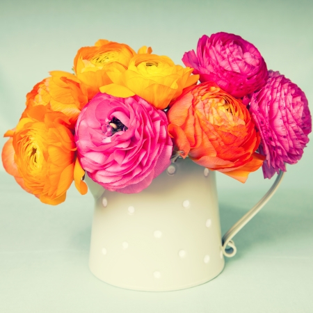 Colorful persian buttercups flowers in watering cam on vintage background Stock Photo