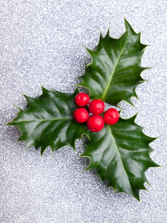 Christmas holly with red berries on silver holiday background Stock Photo