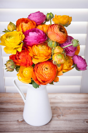 persian buttercup: Persian buttercup flowers in a vase with sun light coming out of window blinds  Stock Photo