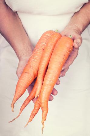 carots: Elderly hands holding organic fresh carots with vintage style Stock Photo