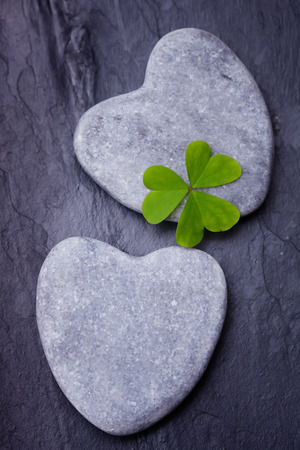 three leafed: Two  grey heart shaped rocks with three leafed clover on a tile background Stock Photo