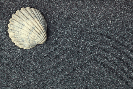 A sea shell in a relaxing zen garden with black  sand Stock Photo