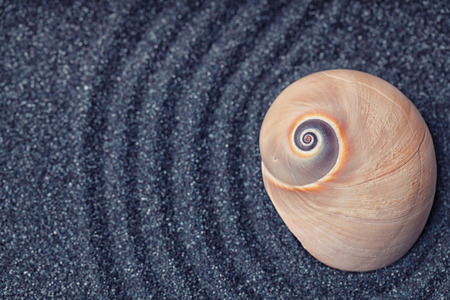massive: A massive  snail shell in a zen garden with black sand Stock Photo