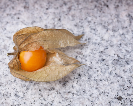 calyx: A calyx open, exposing the ripe fruit of physalis peruviana on  marble