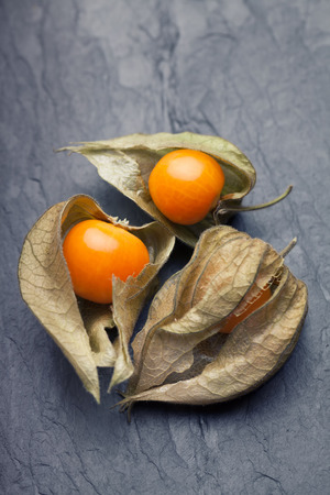 calyx: An open calyx, exposing the ripe fruit of physalis peruviana on a dark tile