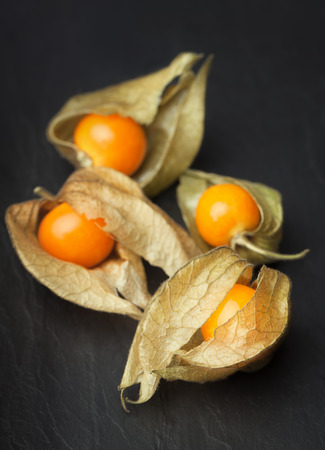 calyx: An open calyx, exposing the ripe fruit of physalis peruviana on a dark black vintage plate