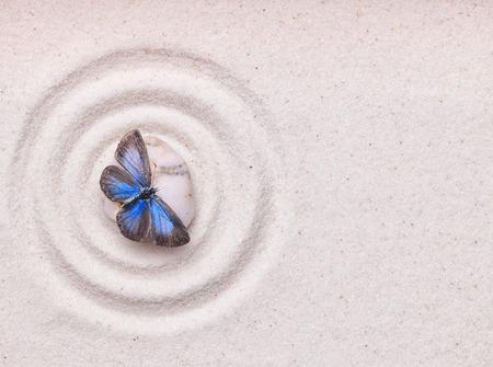 Ein blauer lebendigen Schmetterling auf einem Zen-Stein mit Kreis-Muster auf den weißen Sandkorn