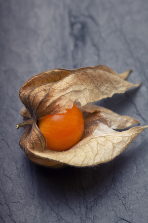 calyx: An open calyx, exposing the ripe fruit of physalis peruviana on black tile plate
