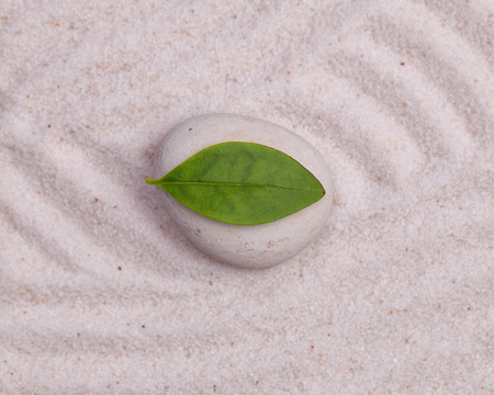 white sand: Close up of white stone and green  leaf  in the white sand Stock Photo
