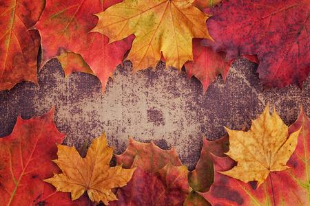 ぼろぼろのシックな表面に秋の葉の束