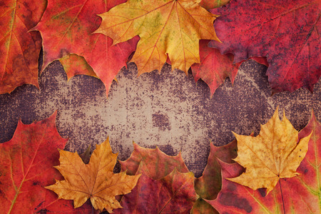 colorful leaves: A bunch of autumn leaves on a shabby chic surface Stock Photo
