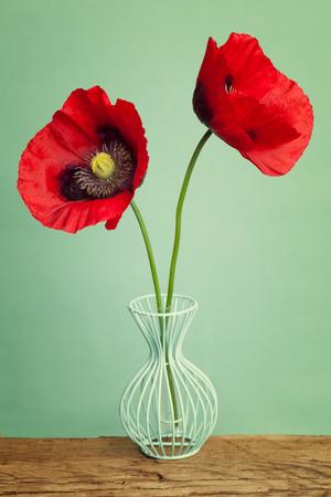 compleanno: Charming fiori di papaveri rossi in un vaso blu sul tavolo in legno Archivio Fotografico